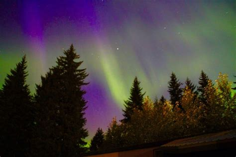 northern lights in summer 29 best images about alaska trip 2016 on