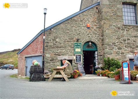 the shed porthgain pembrokeshire