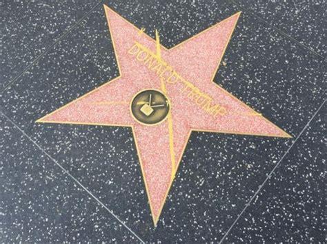 leron gubler wiki donald trump s star vandalized chano8