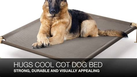 best dog bed for large dogs large dog beds walmart what are the best dog beds for