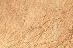 human skin closeup background royalty free stock photo image 26628355 skin human texture hair up royalty free stock photo image 32715995
