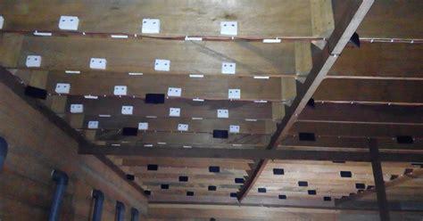 gambar rumah burung walet kayu contoh sur