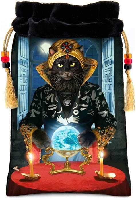 Frances Fortune Teller Bag by 19 Best Images About Fortune Tellers On New
