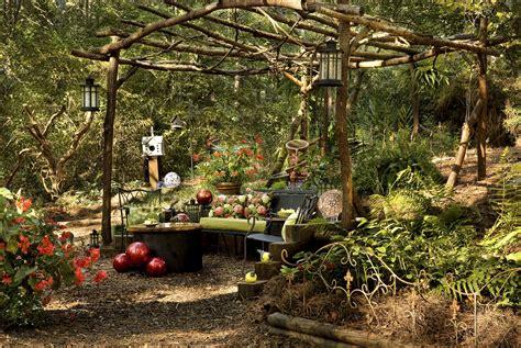backyard woods backyard transformation from wild woods to garden dream
