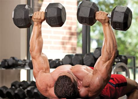 db flat bench press troubleshooting dumbbell bench press muscle performance