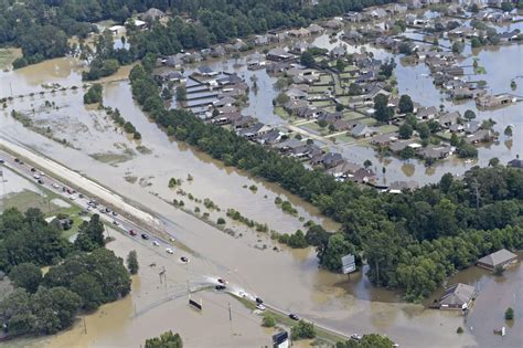 sw boat tours near lafayette la louisiana omv to allow vehicle owners to cancel flooded