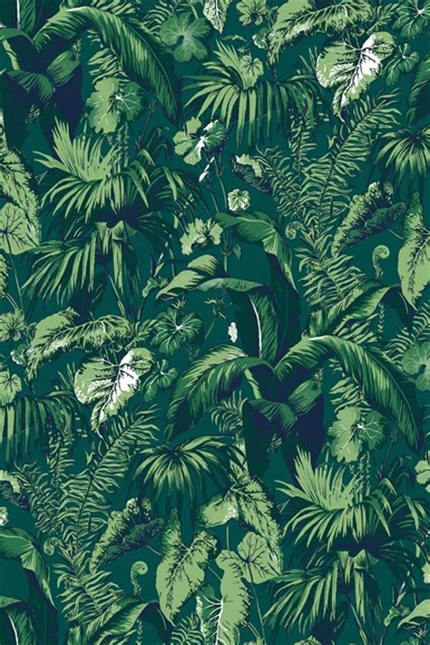 wallpaper tropical green feuillage by madeleine castaing madeleine wallpaper