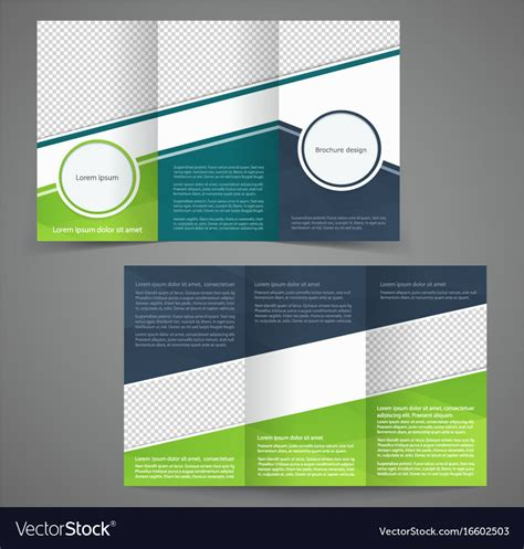 Tri Fold Business Brochure Template Two Sided Vector Image Sided Tri Fold Brochure Template