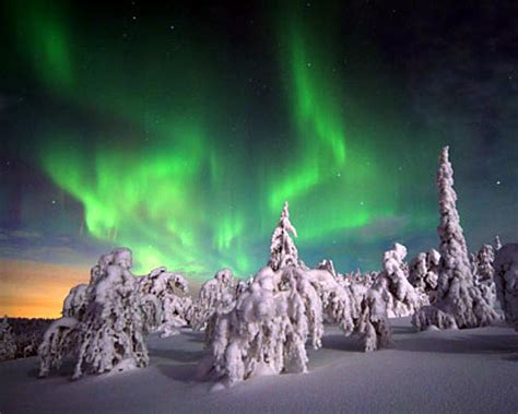igloo to watch northern lights glass igloo village the northern lights faustian urge