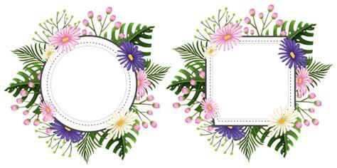 cornici a fiori due cornici floreali con fiori rosa e viola scaricare