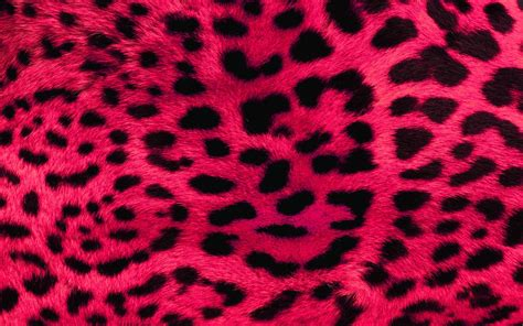 printed wallpaper animal print desktop backgrounds wallpaper cave
