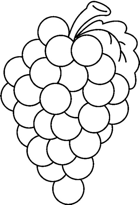grape art drawing clipart best