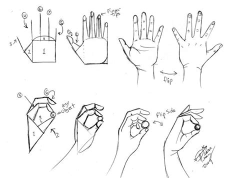 how to draw hands 35 tutorials how tos step by steps draw hands 1 by diana huang on deviantart