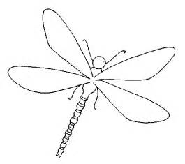 dragonfly color fly coloring page and bullseye lasso