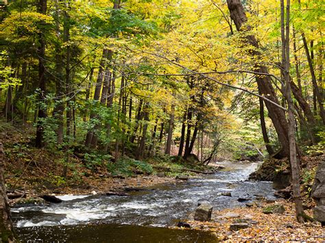 2014 grants available for hamilton harbour watershed water