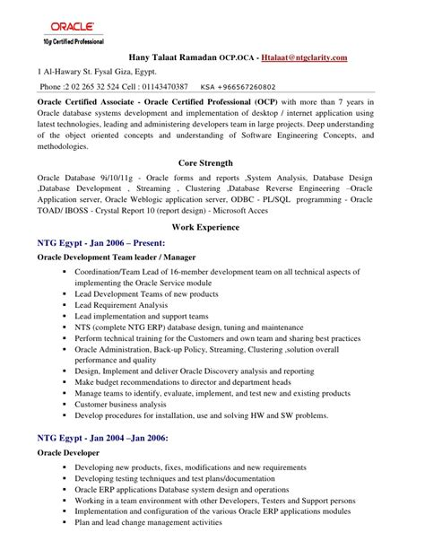Oracle Forms Developer Resume by Oracle Forms And Reports Resume Resume Ideas
