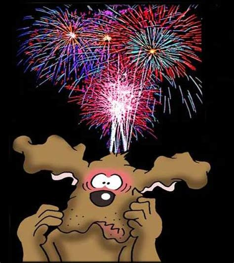 fireworks dogs dogs who fireworks for all pointy dogs