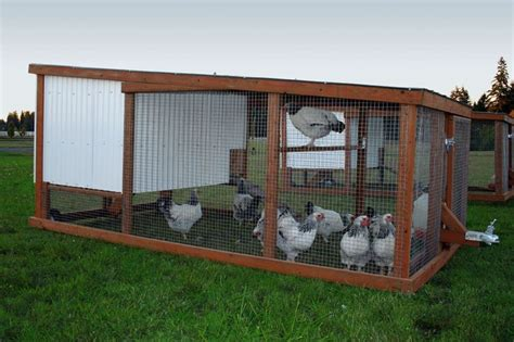 portable backyard chicken coop chicken mobile shed plans amazon portable chicken coop