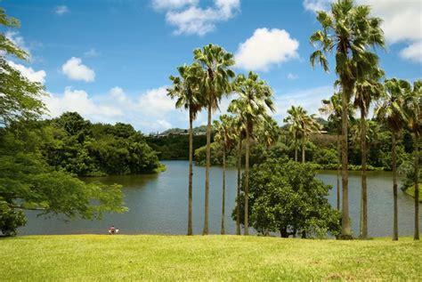 Hoomaluhia Botanical Gardens A Guide To Oahu S Best Botanical Gardens Hawaii Magazine