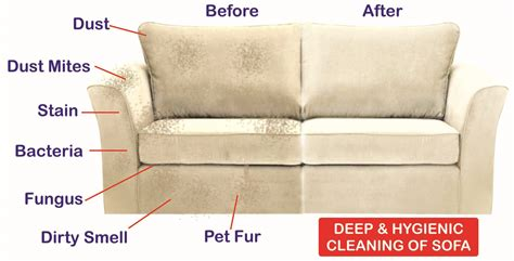 settee cleaners sofa cleaning service