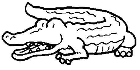 Dessins De Crocodile 224 Colorier Dessin Dessin De Alligator A Imprimer Et Colorier L