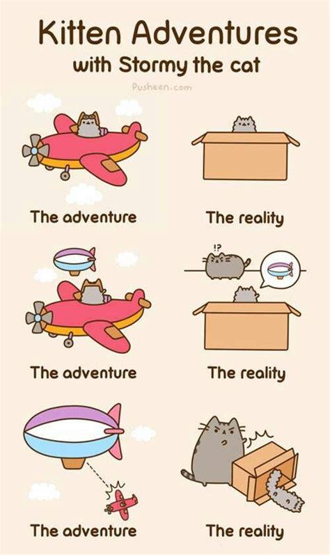 Pusheen The Cat Meme - more pusheen cat cartoon memes pinterest photos lol