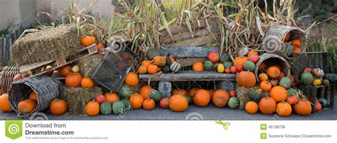 d 233 coration de hallowoon d automne de potiron photo stock