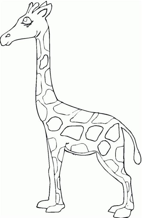imagenes de jirafas sin colorear jirafas animados imagui