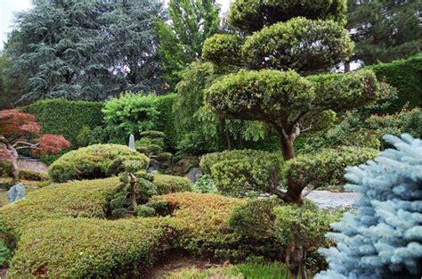 il giardino giapponese seminario tecnico il giardino giapponese oltre free