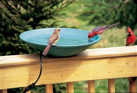 wild birds unlimited are there heated birdbaths that are