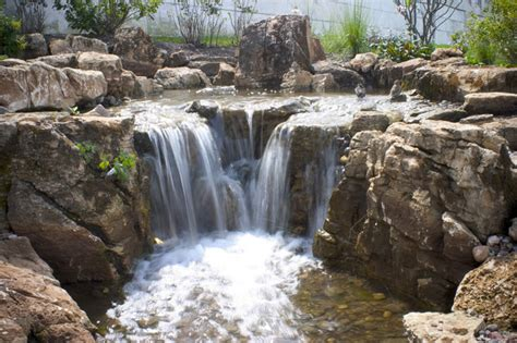 aquarium design waterfall shedd aquarium water feature