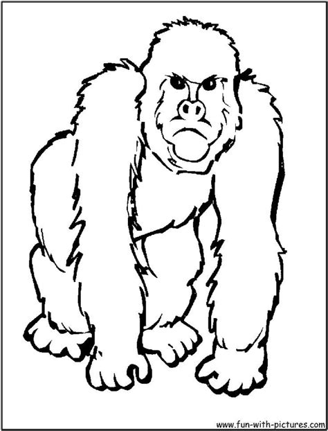templates for zoo animals zoo animal templates az coloring pages