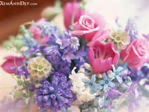 beautiful flower arrangements beautiful flower arrangements pictures xemanhdep photos awesome pictures gallery