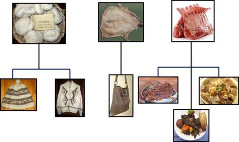 imagenes de animales y sus derivados derivados de los animales derivados de la oveja