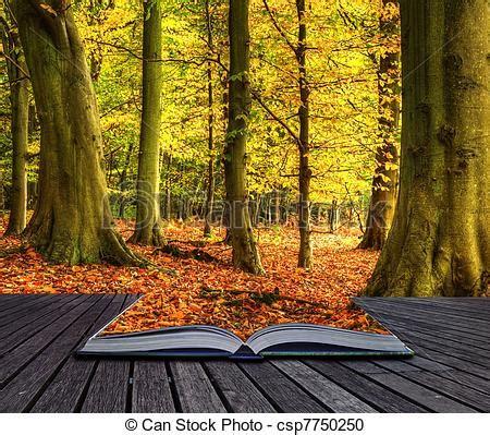 libro hiver recueil de nouvelles photographies de magie automne livre for 234 t automne pages paysage csp7750250