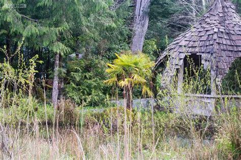 Tofino Botanical Gardens 21 Stunning Photos Of Tofino And Surrounding Areas