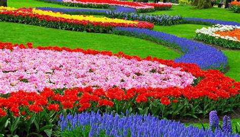 Flower Garden Landscape Flower Landscape Images Search