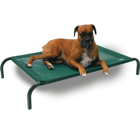 high dog beds coolaroo elevated knitted fabric pet bed green