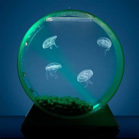 Desk Top Aquarium by Wordlesstech Desktop Jellyfish Tank