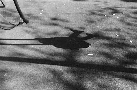 shadow swing my sunday photo the shadow of the swing blog of dad
