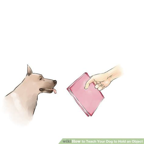 how can puppy hold how to teach your to hold an object with pictures wikihow