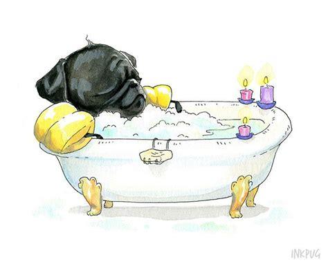 Dogs In A Bathtub Dictionary by Best 25 Pug Ideas On Pug Pug Diy And Pugs