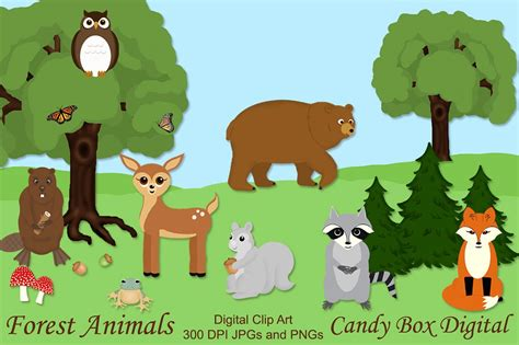 animal clipart animal clipart forest animal pencil and in color animal