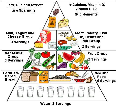 Food Pyramid Worksheet by Crcs Get Healthy Get Fit Food Pyramid