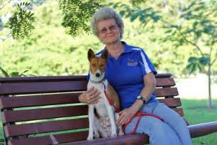dog breeding bench queensland dog breeders fear new registration laws will