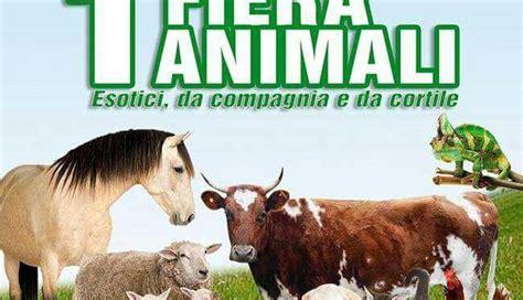 fiere animali da cortile prima fiera degli animali esotici da compagnia e da