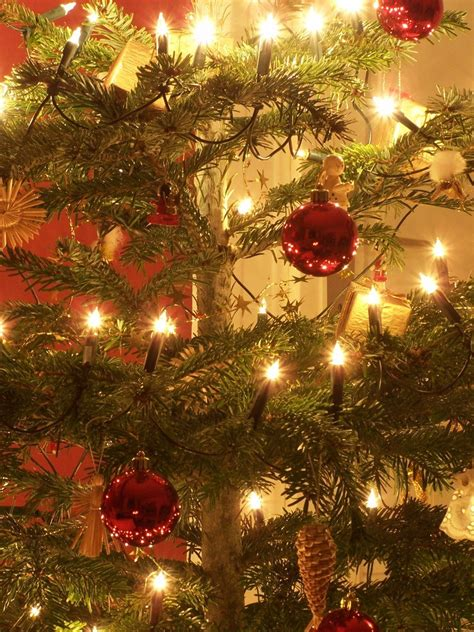 free closeup of christmas tree stock photo freeimages com