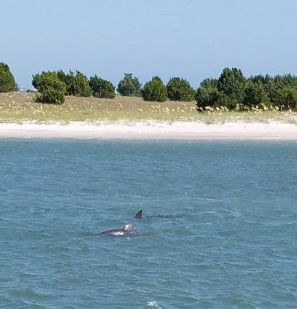 boat cruises beaufort nc crystal coast lady cruises beaufort all you need to