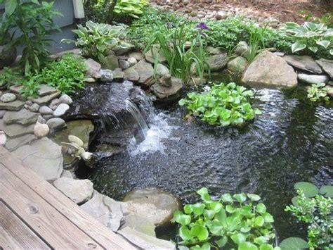 Garten Teich Pflanzen by Gartenteich Pflanzen Tiere Gestaltungsideen Garden