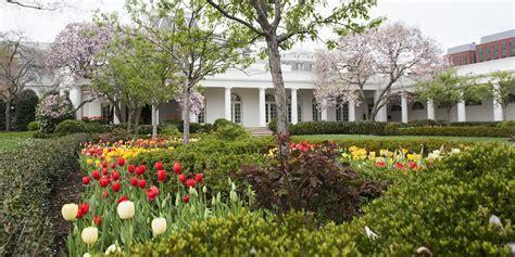 white house rose garden journalist who filmed trump sobbing in rose garden still in custody
